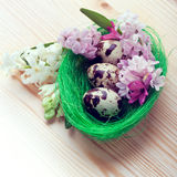 Ρύθμιση Πάσχας - αυγά ορτυκιών και λουλούδια υάκινθων Στοκ φωτογραφία με δικαίωμα ελεύθερης χρήσης