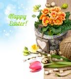 Ρύθμιση Πάσχας με τα λουλούδια, τα αυγά και τον τίτλο Στοκ Εικόνα
