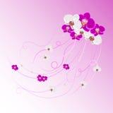 Ρύθμιση των λουλουδιών και των μαργαριταριών ορχιδεών διανυσματική απεικόνιση