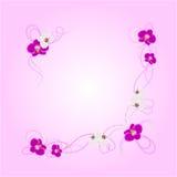 Ρύθμιση των λουλουδιών ορχιδεών Στοκ Εικόνες