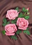 Ρύθμιση των ρόδινων τριαντάφυλλων Στοκ Εικόνα