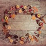 Ρύθμιση φθινοπώρου των φύλλων, των μήλων και των μούρων σε ένα ξύλινο υπόβαθρο με ελεύθερου χώρου για το κείμενο Τοπ άποψη, έννοι Στοκ Εικόνες