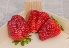 Ρύθμιση 4 φραουλών στοκ εικόνες