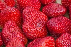 Ρύθμιση 3 φραουλών στοκ φωτογραφίες με δικαίωμα ελεύθερης χρήσης