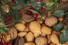 Ρύθμιση Χριστουγέννων με μια επιλογή των ξεφλουδισμένων καρυδιών Στοκ εικόνες με δικαίωμα ελεύθερης χρήσης