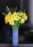 Ρύθμιση Daffodil Στοκ Φωτογραφίες