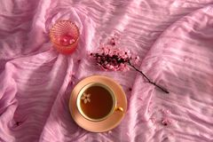 Ρύθμιση Flatlay στο ροζ στοκ εικόνα