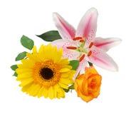 ρύθμιση floral lilly Στοκ εικόνα με δικαίωμα ελεύθερης χρήσης