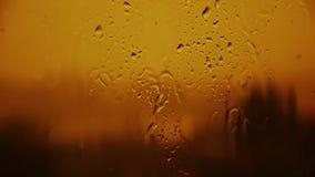 Ρύπανση, βροχή, πτώση Μολυσμένη βροχή 25 απόθεμα βίντεο