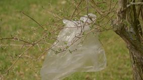 Ρύπανση των πλαστικών στο έδαφος Τα πλαστικά απόβλητα κρεμούν σε έναν κλάδο και κυματίζουν στον αέρα Προστασία του περιβάλλοντος απόθεμα βίντεο