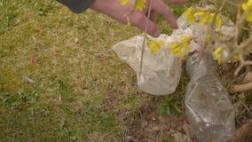 Ρύπανση των πλαστικών στο έδαφος Συλλογή απορριμάτων Το χέρι καθαρίζει τα πλαστικά απόβλητα Προστασία του περιβάλλοντος Πλαστικά  απόθεμα βίντεο