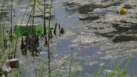 Ρύπανση των υδάτων. απόθεμα βίντεο