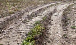 Ρύπος φθινοπώρου στο δρόμο Στοκ Φωτογραφίες