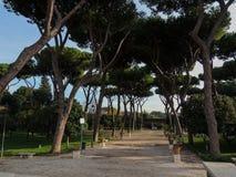 11 Ρώμη Στοκ Εικόνες