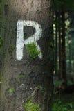 Ρ ως Rennsteig Στοκ εικόνα με δικαίωμα ελεύθερης χρήσης