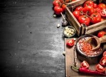 Σάλτσα ντοματών με τα καρυκεύματα, το καυτά πιπέρι και το σκόρδο Στοκ Φωτογραφίες