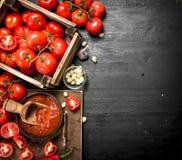 Σάλτσα ντοματών με τα καρυκεύματα, το καυτά πιπέρι και το σκόρδο Στοκ φωτογραφίες με δικαίωμα ελεύθερης χρήσης