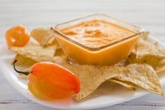 Σάλτσα Habanero, salsa de chiles habaneros, πικάντικα ώριμα μεξικάνικα τρόφιμα πιπεριών τσίλι habanero καυτά στο Μεξικό στοκ εικόνα