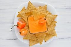 Σάλτσα Habanero, salsa de chiles habaneros, πικάντικα ώριμα μεξικάνικα τρόφιμα πιπεριών τσίλι habanero καυτά στο Μεξικό στοκ εικόνες με δικαίωμα ελεύθερης χρήσης