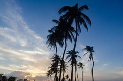 Σάντα Μαρία del Mar Beach, Αβάνα, Κούβα στοκ φωτογραφία