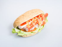 σάντουιτς ή σάντουιτς υγείας στο υπόβαθρο Στοκ φωτογραφία με δικαίωμα ελεύθερης χρήσης