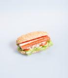 σάντουιτς ή σάντουιτς υγείας στο υπόβαθρο Στοκ Φωτογραφίες