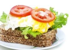 σάντουιτς αυγών στοκ εικόνα
