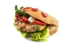 Σάντουιτς γρήγορου φαγητού Στοκ Εικόνες
