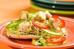 σάντουιτς κοτόπουλου Στοκ Εικόνα