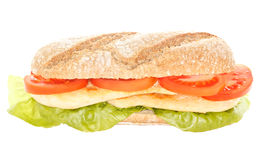 Σάντουιτς κοτόπουλου Στοκ εικόνα με δικαίωμα ελεύθερης χρήσης