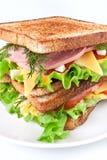 σάντουιτς κρέατος μαρουλιού τυριών στοκ εικόνες