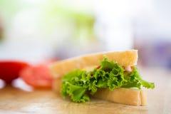 Σάντουιτς με τα λαχανικά Στοκ Εικόνες