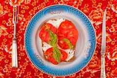 Σάντουιτς με την άσπρες σάλτσα και την ντομάτα Στοκ Φωτογραφίες