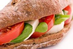 Σάντουιτς με τη μοτσαρέλα Στοκ φωτογραφία με δικαίωμα ελεύθερης χρήσης