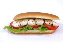 Σάντουιτς με τη μοτσαρέλα Στοκ εικόνα με δικαίωμα ελεύθερης χρήσης