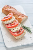 Σάντουιτς με τις τεμαχισμένες φρέσκες ντομάτες και τη μοτσαρέλα Στοκ φωτογραφίες με δικαίωμα ελεύθερης χρήσης