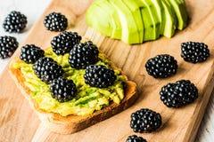 Σάντουιτς με το αβοκάντο και το βατόμουρο υγιής χορτοφάγος τροφίμων Στοκ Εικόνες