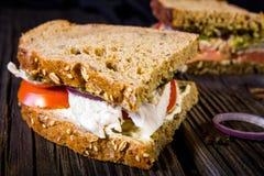 Σάντουιτς με το κοτόπουλο, τη σάλτσα και τα λαχανικά Στοκ Φωτογραφία