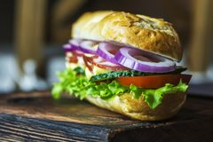 Σάντουιτς με το κρέας στοκ εικόνα