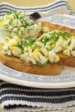 Σάντουιτς με το τυρί εξοχικών σπιτιών στοκ εικόνες