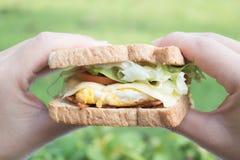 Σάντουιτς με το χέρι δύο Στοκ Εικόνα