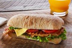 Σάντουιτς με το ψημένο στη σχάρα τυρί μπέϊκον ντοματών κοτόπουλου Στοκ Εικόνα
