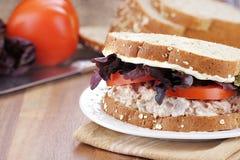 Σάντουιτς σαλάτας τόνου σε ολόκληρο το ψωμί σιταριού στοκ φωτογραφία με δικαίωμα ελεύθερης χρήσης