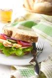 Σάντουιτς της Τουρκίας και τυριών Στοκ εικόνα με δικαίωμα ελεύθερης χρήσης