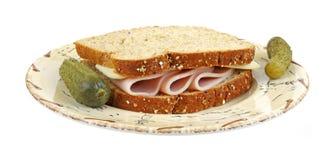 σάντουιτς Τουρκία τυριών Στοκ φωτογραφία με δικαίωμα ελεύθερης χρήσης