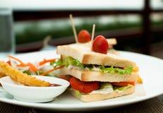 Σάντουιτς του άσπρου ψωμιού με τα λαχανικά και τα τηγανητά Στοκ φωτογραφία με δικαίωμα ελεύθερης χρήσης