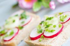 Σάντουιτς τροφίμων άνοιξη πικ-νίκ με το ακατέργαστα ραδίκι και τα φρέσκα κρεμμύδια Στοκ Φωτογραφία