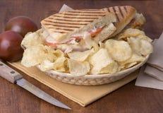 σάντουιτς panini Στοκ φωτογραφία με δικαίωμα ελεύθερης χρήσης