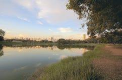 Σάο του Paulo πάρκων ibirapuera Στοκ εικόνα με δικαίωμα ελεύθερης χρήσης