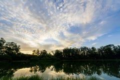 Σάο του Paulo πάρκων ibirapuera Στοκ εικόνες με δικαίωμα ελεύθερης χρήσης